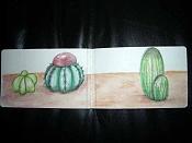 MOLESKINE_para amantes de las Moleskine-jardin-cactus-1.jpg