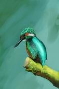 Sketchbook de Fog-bird_001.jpg
