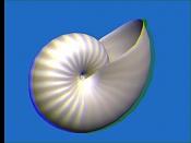 Estereoscopia-concha.jpg