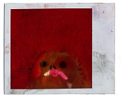 expired film-polaroid.jpg