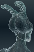 Mostro acuatico  -mostro-geo.jpg