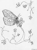 Dibujo artistico - El Pastelista-mariposa.jpg