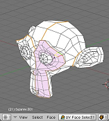 Manual de Blender - PaRTE IV - TEXTURaS-new_face_select_mode.png