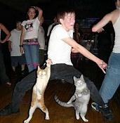 Fotos Graciosas divertidas con Humor-mad.jpg