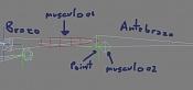 Musculos sencillos y manipulables-musculos01.jpg