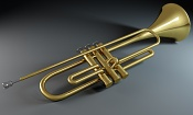 Los instrumentos de mi corto-trompeta01.jpg