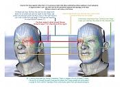 Guía sobre topología para modeladores de personajes 3d-bunk_poly_regions.jpg