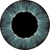 Creacion de un ojo estilo Pixar en Blender-ojo.png