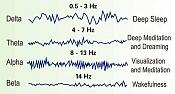 Sueños-brain-waves.jpg