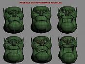 ORCO-faciales.jpg