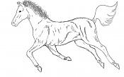 sketchs y algunos dibujos a tableta rapidos-horse.jpg