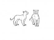 sketchs y algunos dibujos a tableta rapidos-tigrecillo.jpg