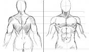 sketchs y algunos dibujos a tableta rapidos-prac_anat01.jpg