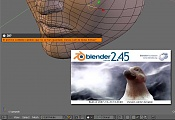Blender 2.46 :: Release y avances-plumiblender-capture_shaz.jpg