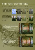 JLucena byluc-hacer-un-fondo-bosque-pag-1.jpg
