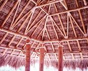 ayuda con mi comedor-cocina con techo de palapa-palapa6.jpg