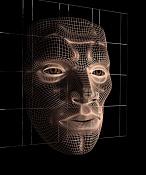 Mi primer modelado de   rostro-mallarostro3d.jpg
