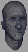 Gordete-base-head.jpg