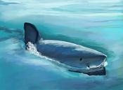 kouprey dibus-shark-01.jpg