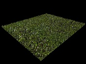 CESPED con 3DS MaX-lmms-grass.jpg