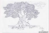 Unos Dibujos-bonsai.jpg