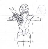 raflexia-mujer-medio-cuerpo-espalda.jpg