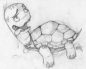 Quiero ilustrar  EdiaN -tortuga2.jpg