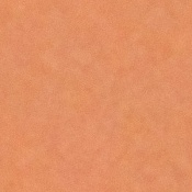 Textura de piel-skin_tile.jpg