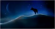 Porfolio Vasilis-Kun-cold-night-for-the-wolf.jpg