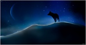 Porfolio Vasilis-Kun-cold-night-for-the-wolf.jpg