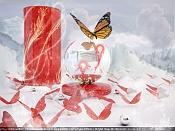 Butterfly-butterfly-final-jpg-1.jpg