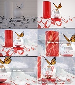 Butterfly-progress-general.jpg