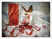 Butterfly-butterfly.jpg