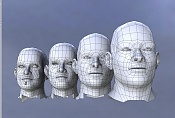 Cabeza humana  Dudas de modelado i consejos -mesh_development.jpg