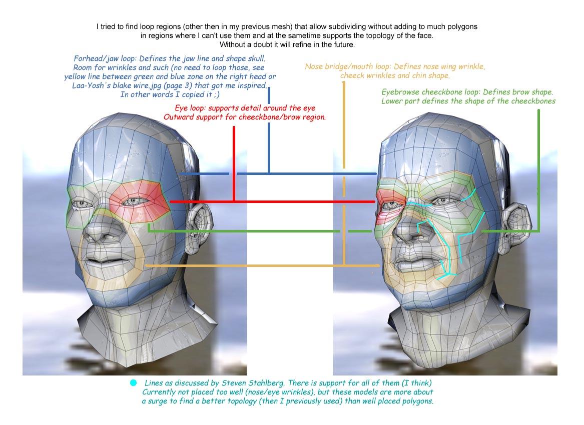 Cabeza humana  Dudas de modelado i consejos -poly_regions.jpg