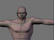 Escultura humana Rig gratuito  desnudez, planeando rig de musculos reales, BlenRig -shoulder.jpg