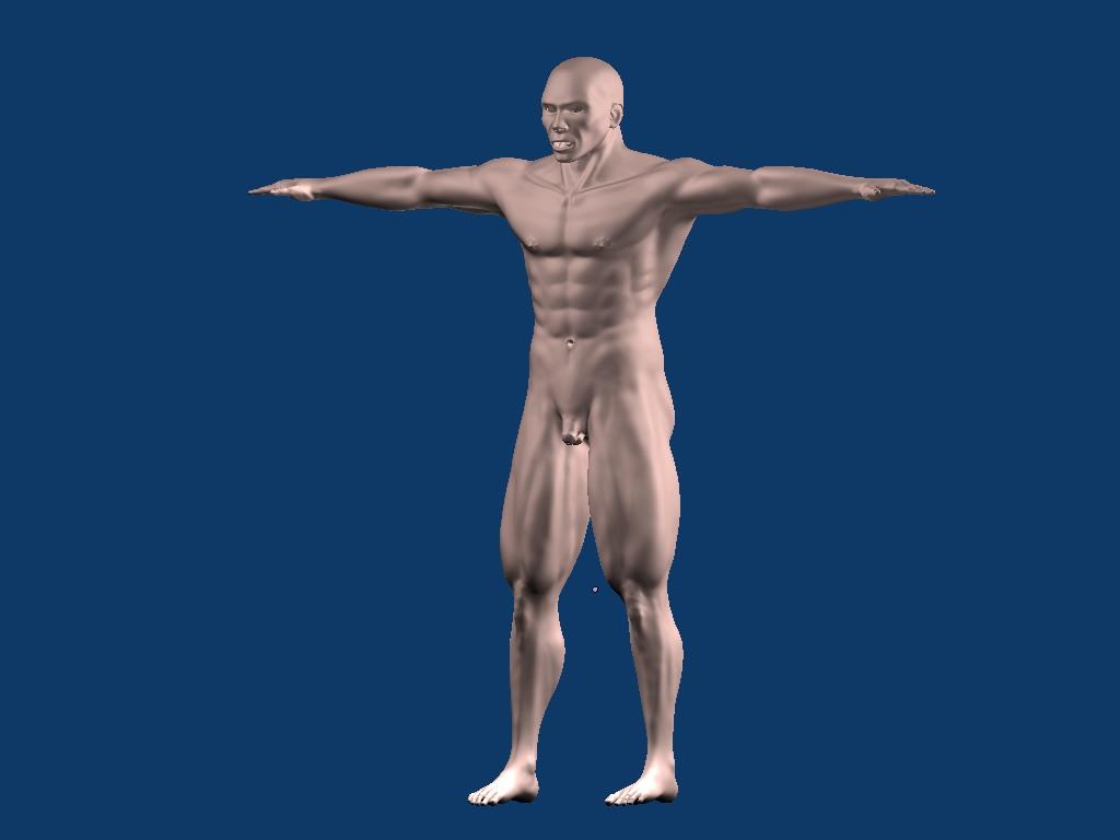 Escultura humana rig gratuito desnudez planeando rig de musculos ...