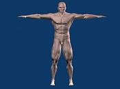 Escultura humana Rig gratuito  desnudez, planeando rig de musculos reales, BlenRig -1.jpg