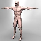 Escultura humana Rig gratuito  desnudez, planeando rig de musculos reales, BlenRig -front-rend.jpg