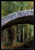 Fotos acortes-puente-talcano-cimg7089-pos.jpg
