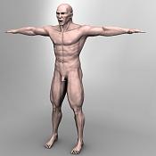 Escultura humana Rig gratuito  desnudez, planeando rig de musculos reales, BlenRig -front-5000.jpg