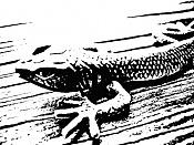 Stencils-lagarto-2bis.jpg