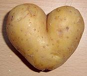 Nuestras jetas o el post de la belleza camuflada-potato_heart_mutation.jpg