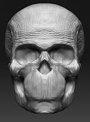 Mis inicios con Zbrush -skull.jpg
