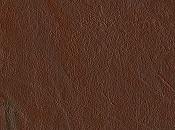 Rinconcito-leather0041_s-1-.jpg