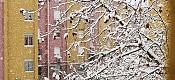 Ha nevado en madrid  -snow_005_lw.jpg