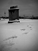 Fotos acortes-nieve-cimg8835-post.jpg