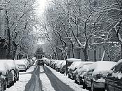 Fotos acortes-nieve-cimg8823-post.jpg