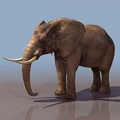 para que sirve esta imagen -elepha01.jpg