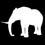 para que sirve esta imagen -elepha02.jpg